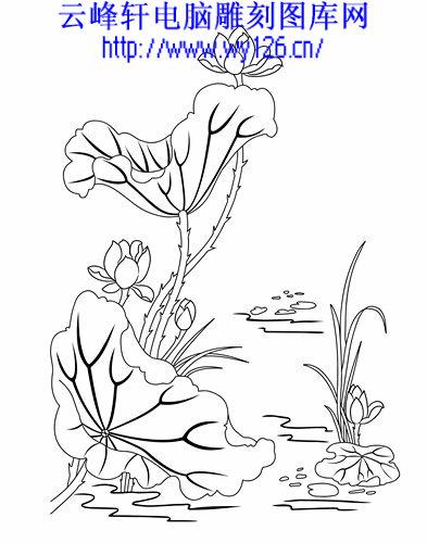 关于莲花中国画白描图片