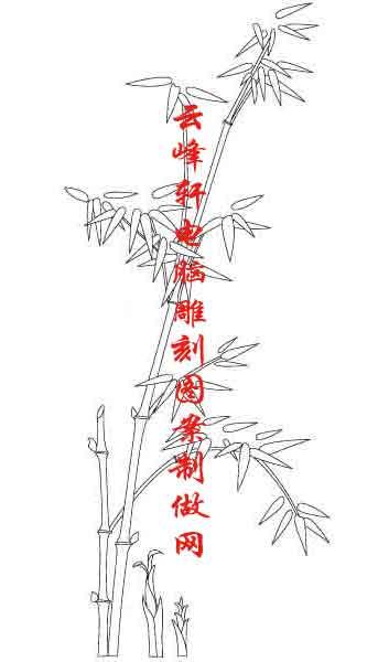 素描竹子的画法铅笔画-梅兰竹菊国画白描矢量雕刻图061
